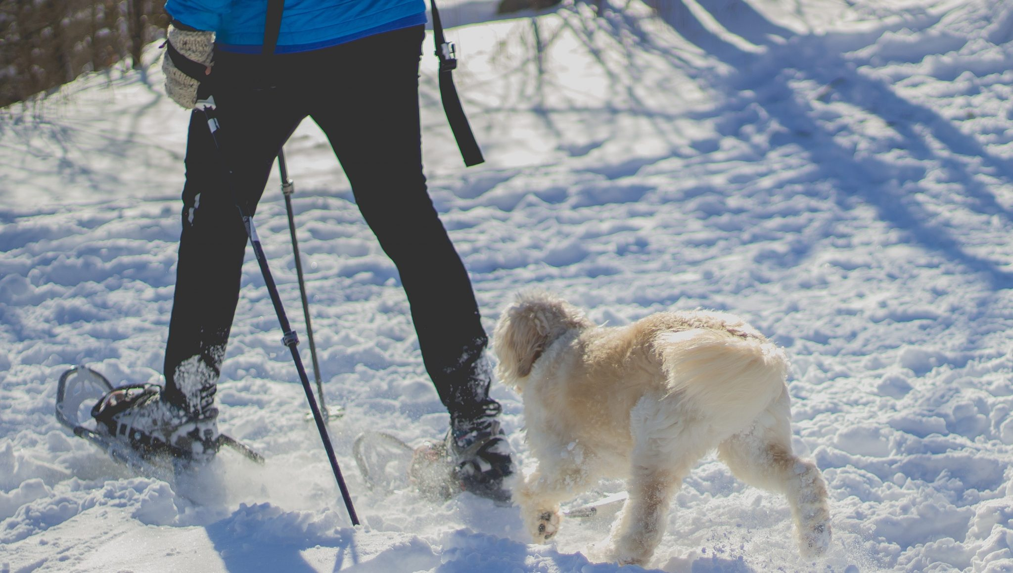 5 Ways To Stay Active In The New Year S Winter Start